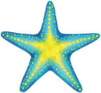 SeaStar Coaching